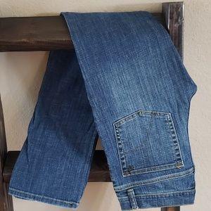 Joe's Jean's Benny Straight Leg Size 18
